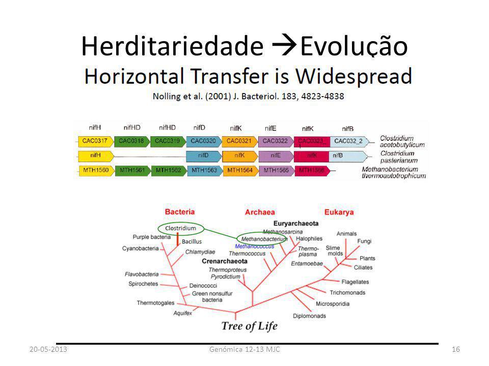 Herditariedade Evolução 20-05-2013Genómica 12-13 MJC16