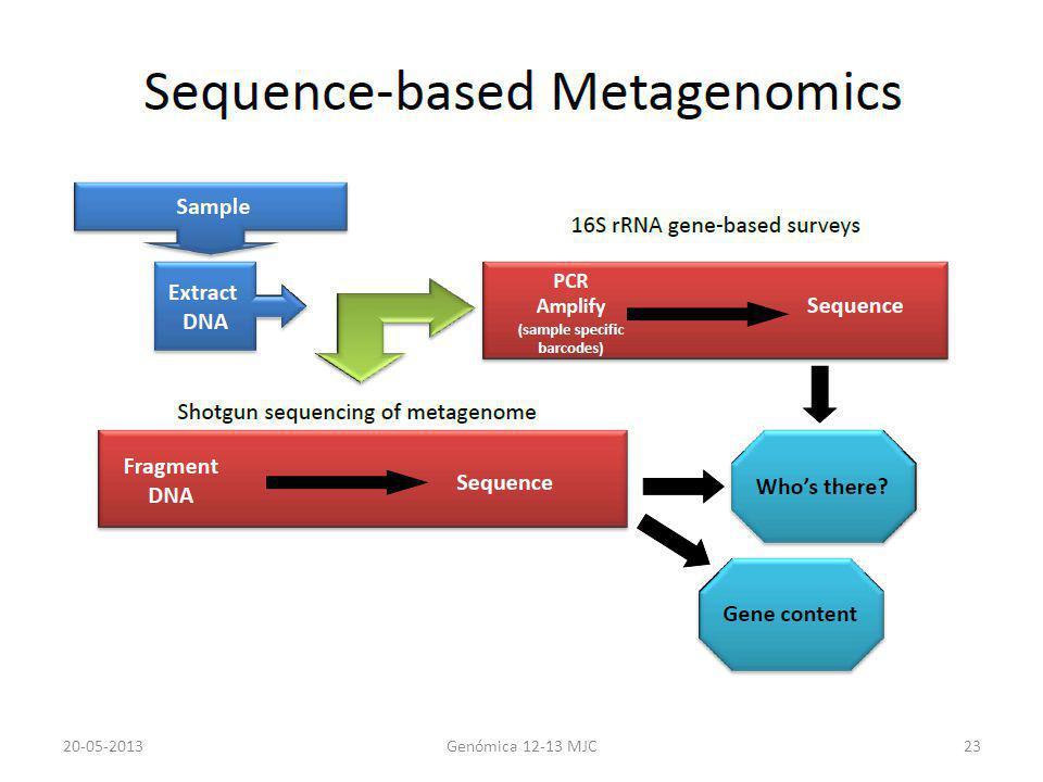 20-05-2013Genómica 12-13 MJC23