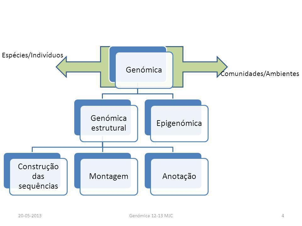 Genómica Genómica estrutural Construção das sequências MontagemAnotaçãoEpigenómica 20-05-2013Genómica 12-13 MJC4 Espécies/Indivíduos Comunidades/Ambie