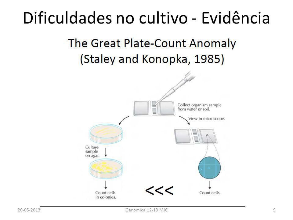 Dificuldades no cultivo - Evidência 20-05-2013Genómica 12-13 MJC9