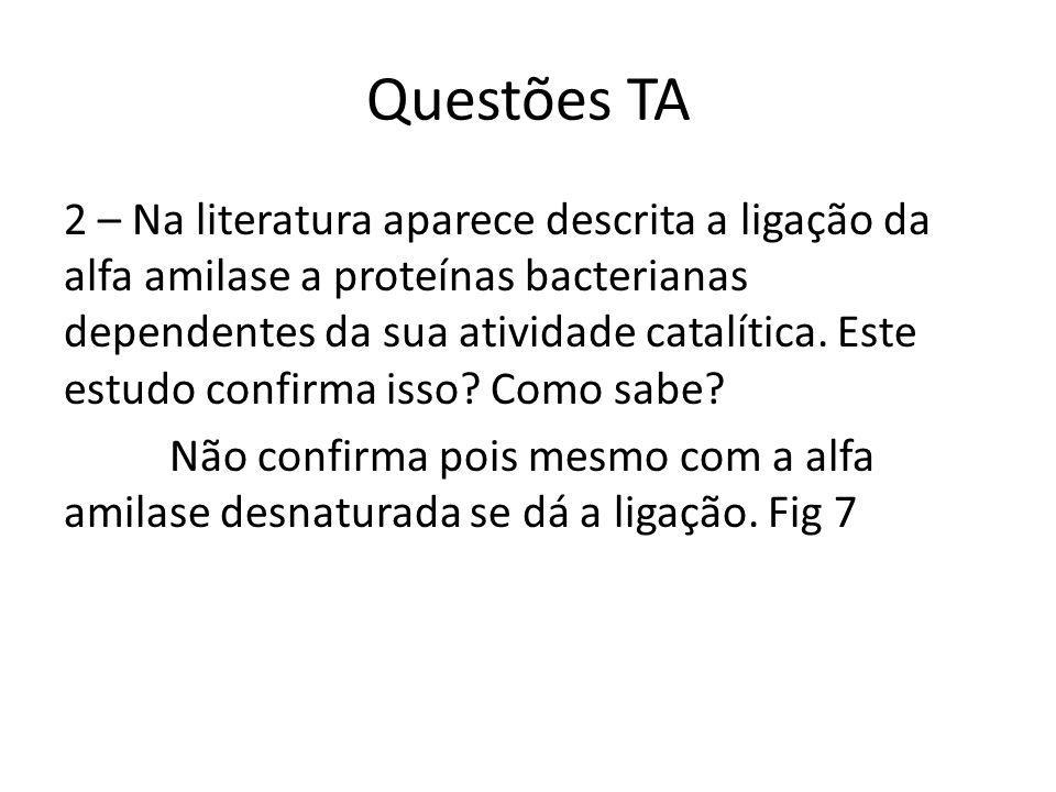 Questões TA 2 – Na literatura aparece descrita a ligação da alfa amilase a proteínas bacterianas dependentes da sua atividade catalítica.