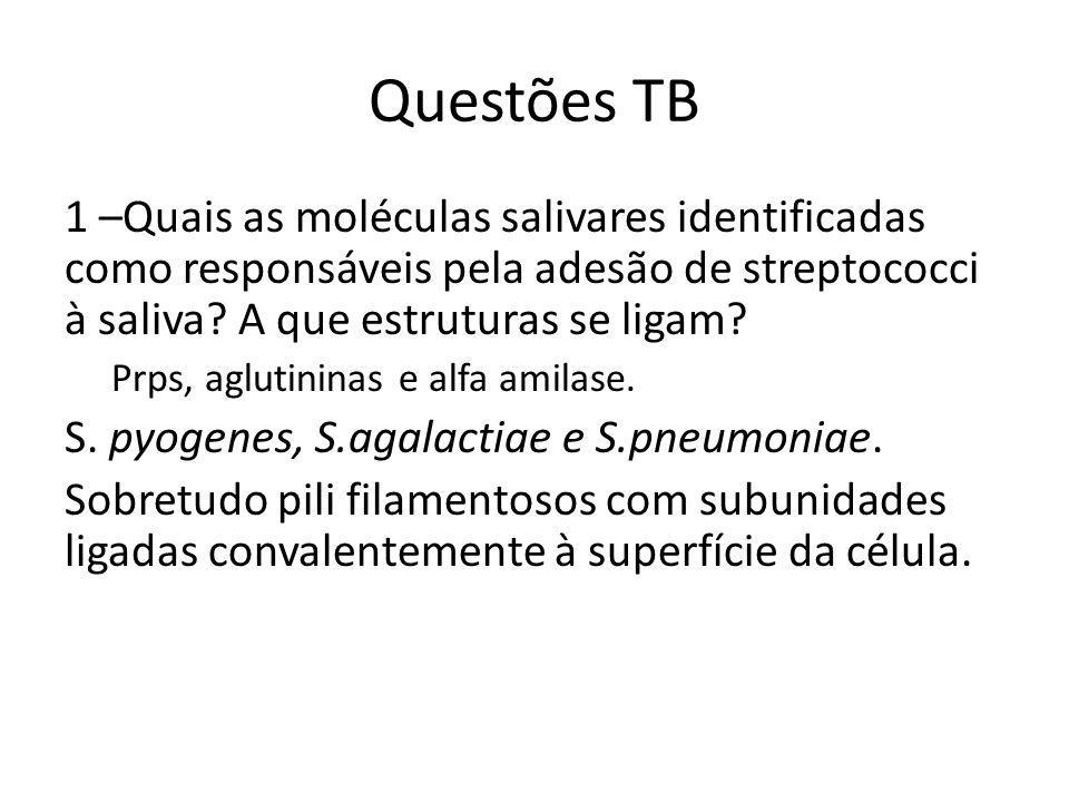 Questões TB 1 –Quais as moléculas salivares identificadas como responsáveis pela adesão de streptococci à saliva.