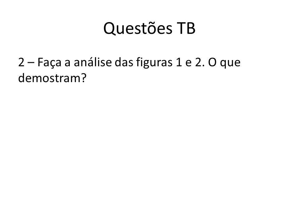 Questões TB 2 – Faça a análise das figuras 1 e 2. O que demostram