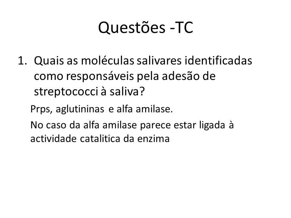 Questões -TC 1.Quais as moléculas salivares identificadas como responsáveis pela adesão de streptococci à saliva.