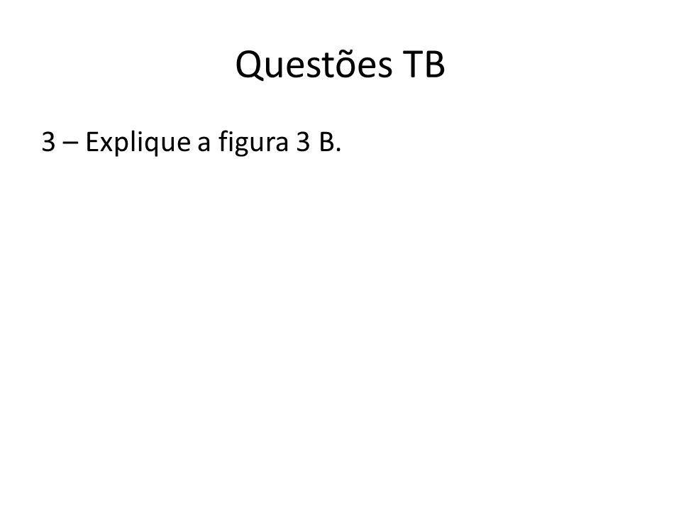 Questões TB 3 – Explique a figura 3 B.