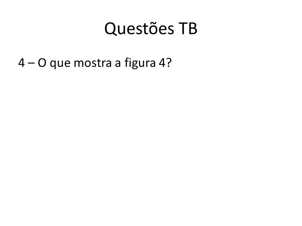 Questões TB 4 – O que mostra a figura 4