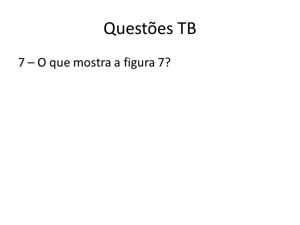 Questões TB 7 – O que mostra a figura 7