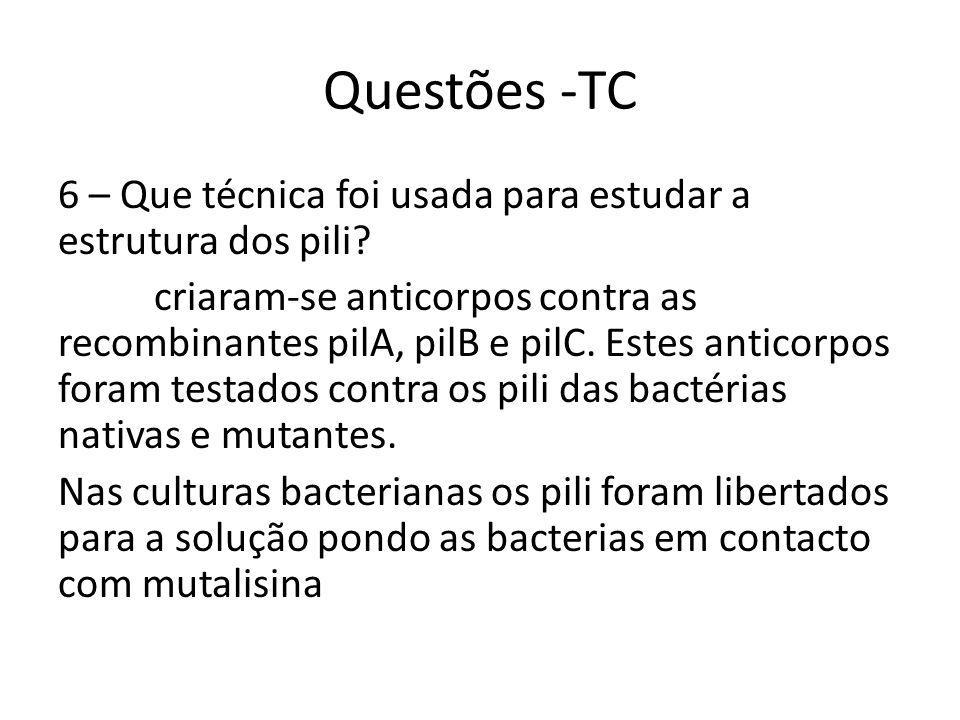 Questões -TC 6 – Que técnica foi usada para estudar a estrutura dos pili.