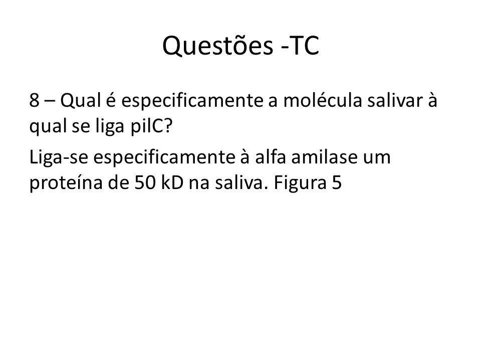 Questões -TC 8 – Qual é especificamente a molécula salivar à qual se liga pilC.