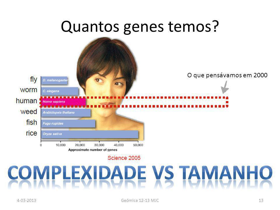 Quantos genes temos O que pensávamos em 2000 4-03-2013Geómica 12-13 MJC13