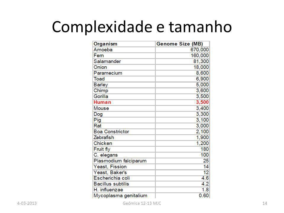 Complexidade e tamanho 4-03-2013Geómica 12-13 MJC14