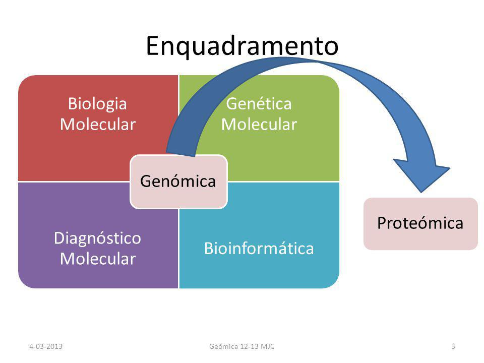 Enquadramento Biologia Molecular Genética Molecular Diagnóstico Molecular Bioinformática GenómicaProteómica 4-03-2013Geómica 12-13 MJC3