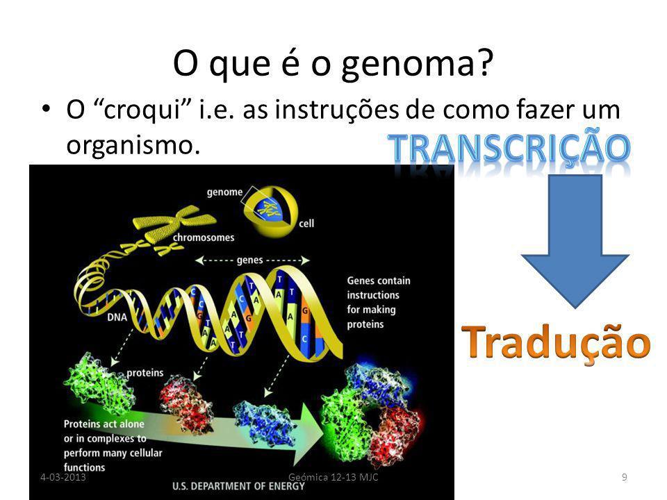 O que é o genoma. O croqui i.e. as instruções de como fazer um organismo.