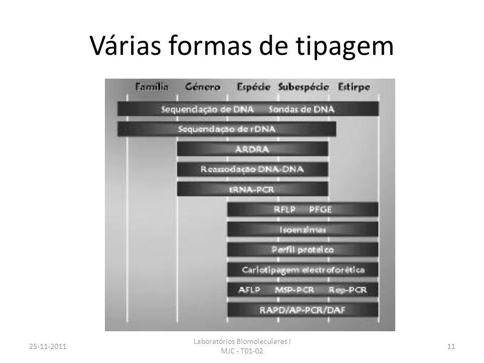 Várias formas de tipagem 25-11-2011 Laboratórios Biomoleculares I MJC - T01-02 11