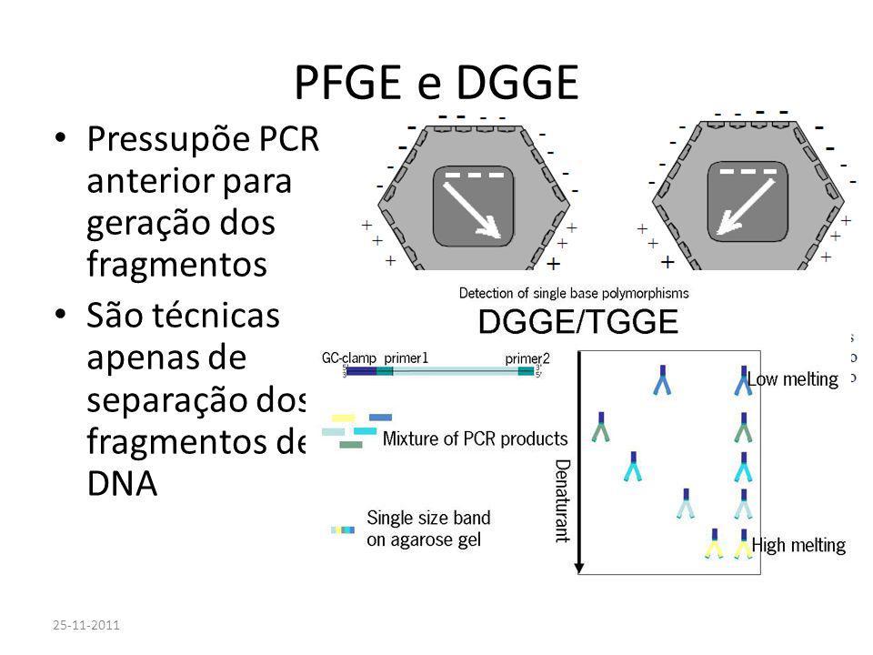 PFGE e DGGE Pressupõe PCR anterior para geração dos fragmentos São técnicas apenas de separação dos fragmentos de DNA 25-11-2011 Laboratórios Biomolec