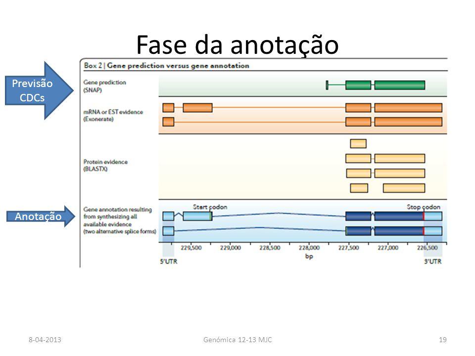 Fase da anotação 8-04-2013Genómica 12-13 MJC19 Previsão CDCs Anotação