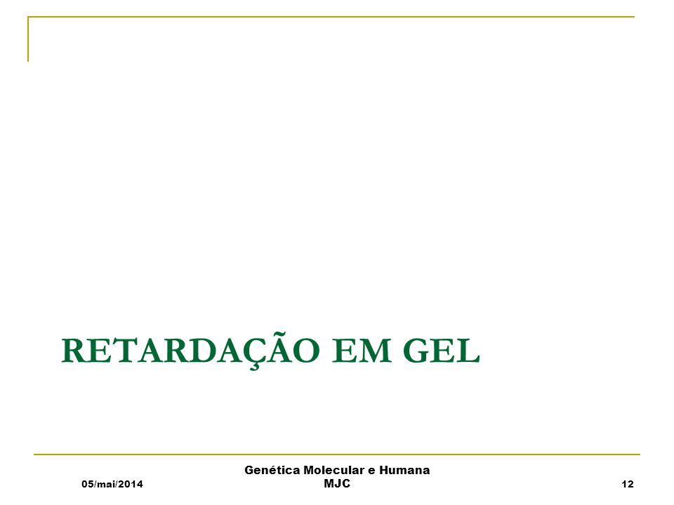 RETARDAÇÃO EM GEL 05/mai/2014 Genética Molecular e Humana MJC 12