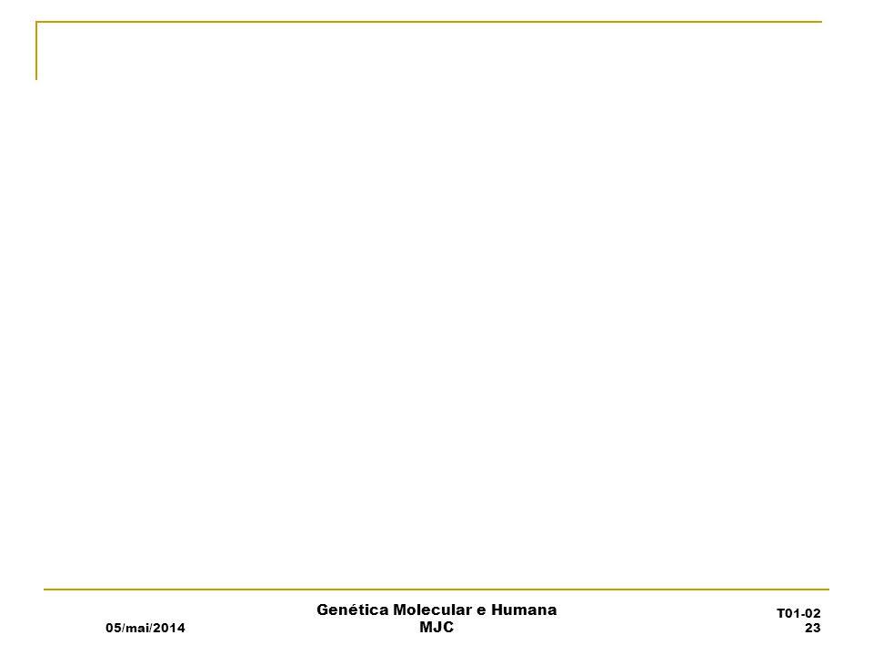 05/mai/2014 Genética Molecular e Humana MJC T01-02 23