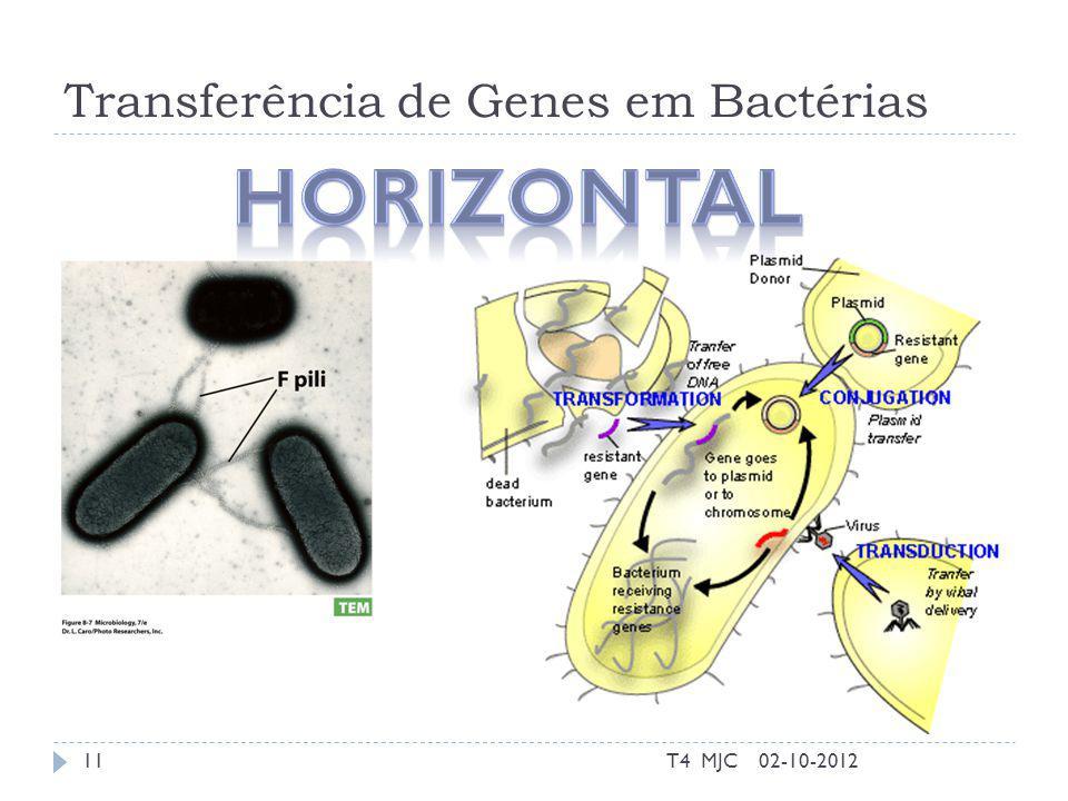 Transferência de Genes em Bactérias 02-10-2012T4 MJC11