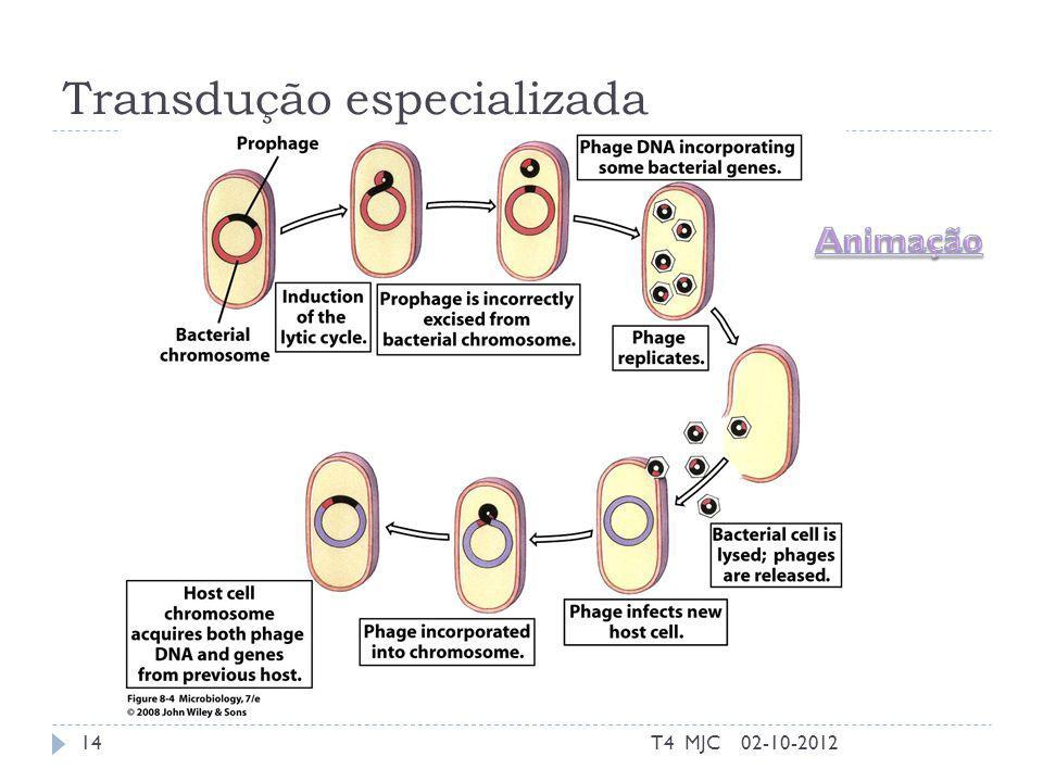 Transdução especializada 02-10-2012T4 MJC14