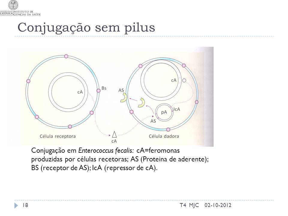 Conjugação sem pilus 02-10-2012T4 MJC18 Conjugação em Enterococcus fecalis: cA=feromonas produzidas por células recetoras; AS (Proteina de aderente);