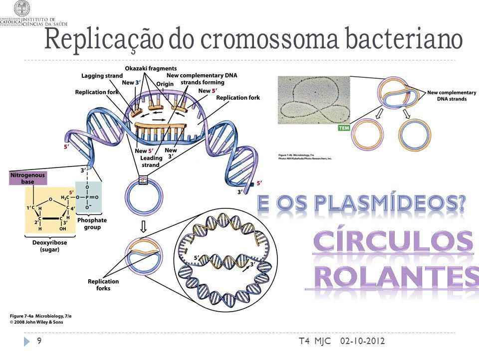 Mutações 02-10-2012T4 MJC20