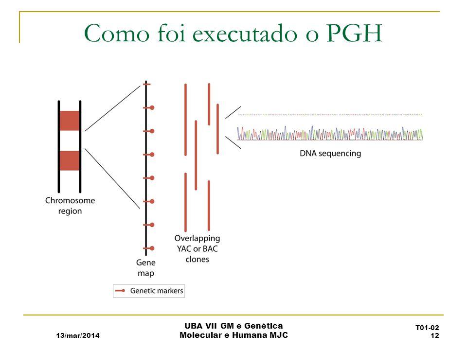 Como foi executado o PGH 13/mar/2014 UBA VII GM e Genética Molecular e Humana MJC T01-02 12