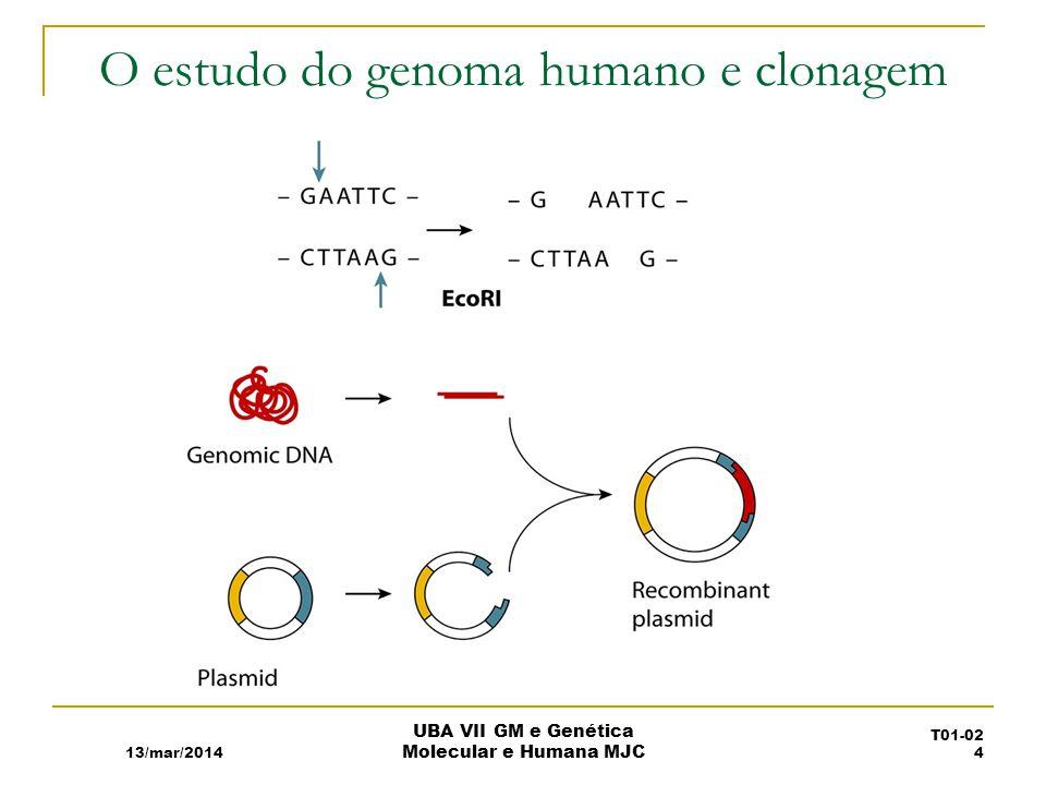O estudo do genoma humano e clonagem 13/mar/2014 UBA VII GM e Genética Molecular e Humana MJC T01-02 4