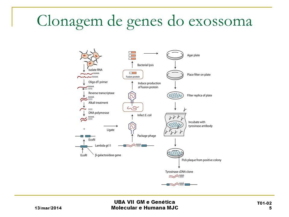 Clonagem de genes do exossoma 13/mar/2014 UBA VII GM e Genética Molecular e Humana MJC T01-02 5