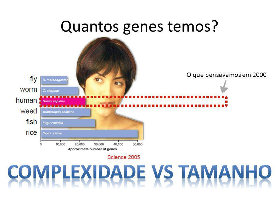 Quantos genes temos O que pensávamos em 2000