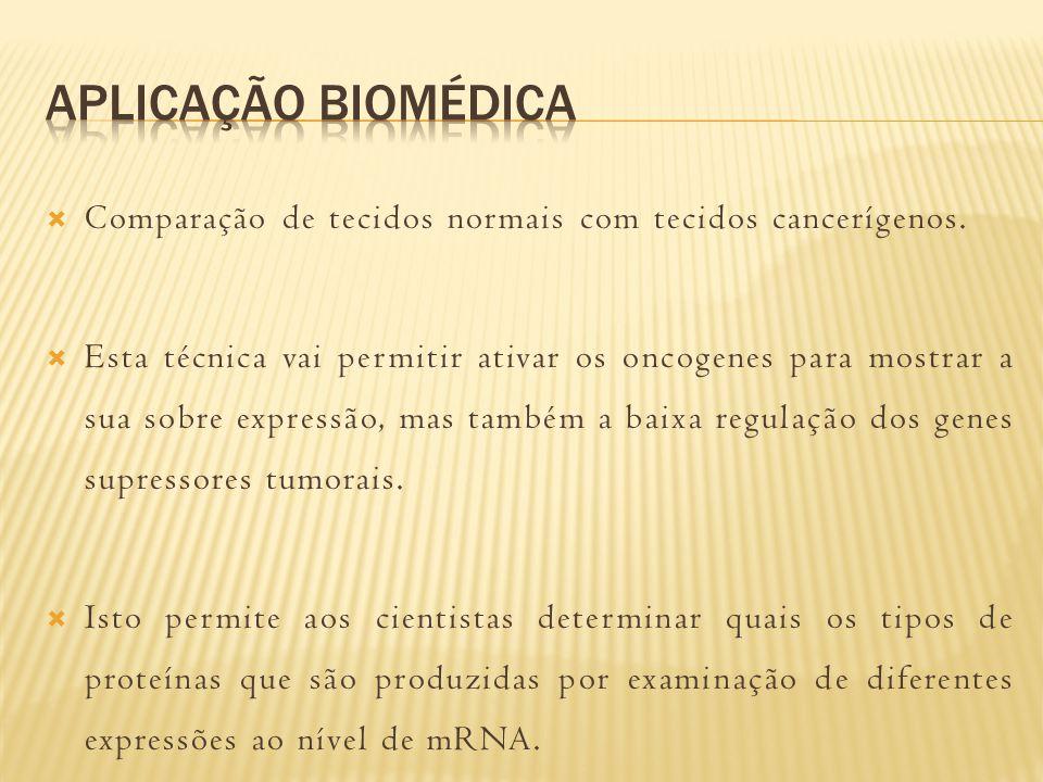 http://www.bio.davidson.edu/courses/genomics/method/ northernblot.html (accessed 15 May 2013) http://www.bio.davidson.edu/courses/genomics/method/ northernblot.html http://www.youtube.com/watch?v=KfHZFyADnNg (acessed 15 May 2013) http://www.youtube.com/watch?v=KfHZFyADnNg http://www.biotecharticles.com/Biotechnology-products- Article/Technique-of-Northern-Blotting-382.html (acessed 15 May 2013) http://www.biotecharticles.com/Biotechnology-products- Article/Technique-of-Northern-Blotting-382.html SNUSTAD, D.