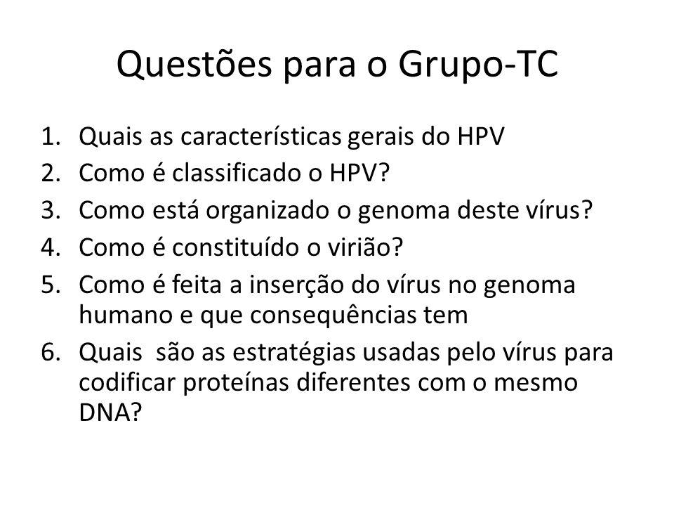 Questões para o Grupo-TC 1.Quais as características gerais do HPV 2.Como é classificado o HPV? 3.Como está organizado o genoma deste vírus? 4.Como é c