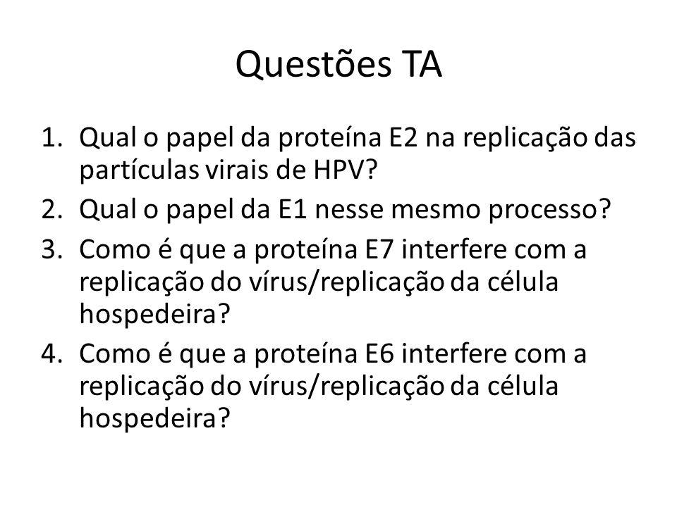 Questões TA 1.Qual o papel da proteína E2 na replicação das partículas virais de HPV? 2.Qual o papel da E1 nesse mesmo processo? 3.Como é que a proteí