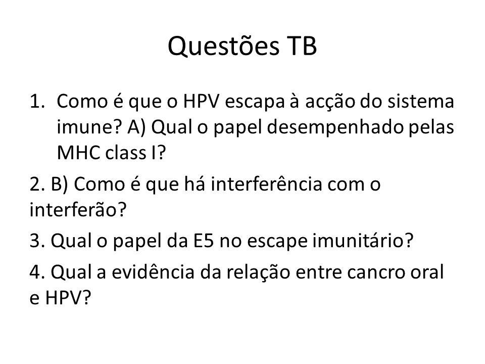 Questões TB 1.Como é que o HPV escapa à acção do sistema imune? A) Qual o papel desempenhado pelas MHC class I? 2. B) Como é que há interferência com