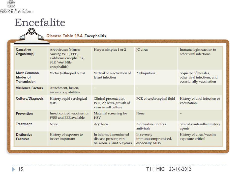 Encefalite 23-10-201215T11 MJC