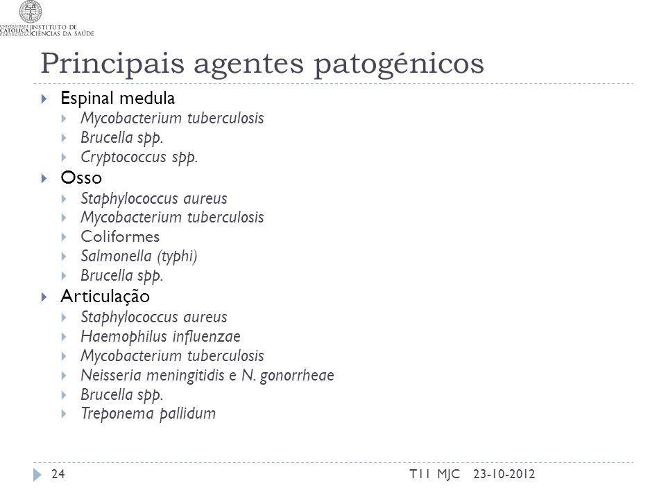 Principais agentes patogénicos Espinal medula Mycobacterium tuberculosis Brucella spp. Cryptococcus spp. Osso Staphylococcus aureus Mycobacterium tube