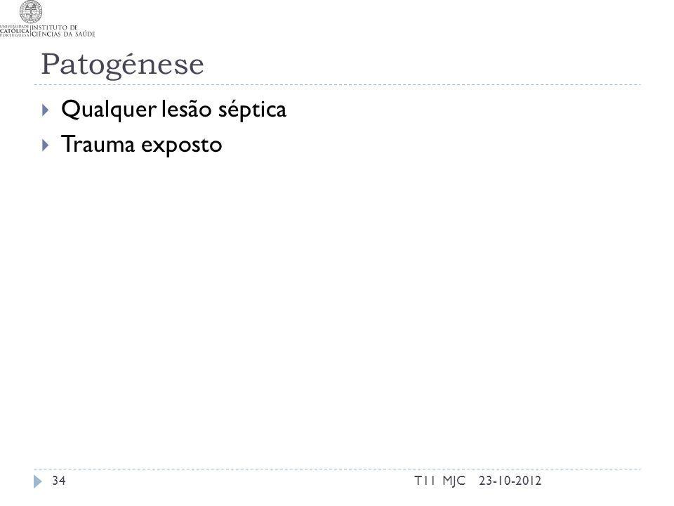 Patogénese Qualquer lesão séptica Trauma exposto 23-10-201234T11 MJC