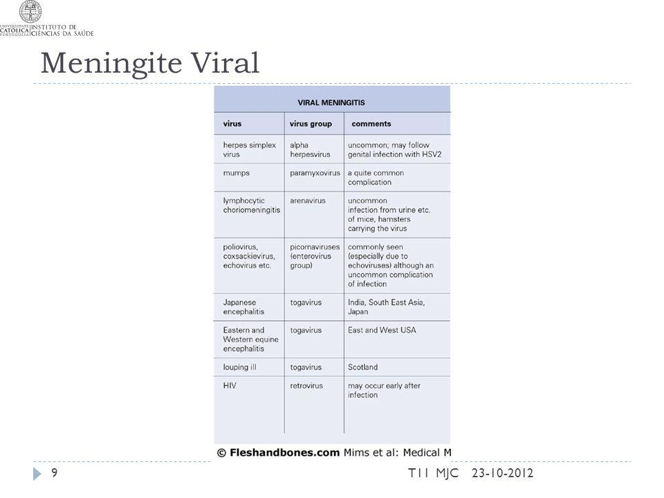 Sinais clínicos da Meningite 23-10-201210T11 MJC