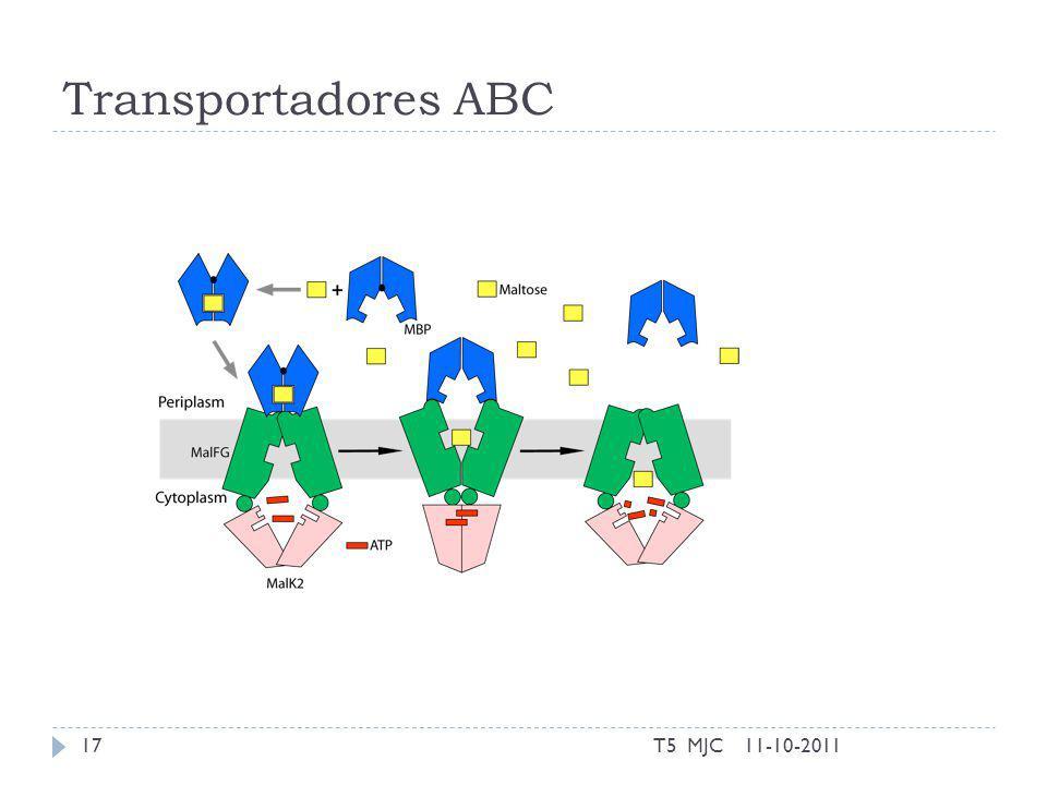 Transportadores ABC 11-10-2011T5 MJC17