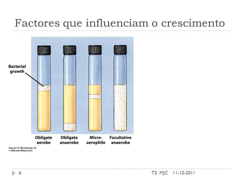 Factores que influenciam o crescimento 11-10-2011T5 MJC6