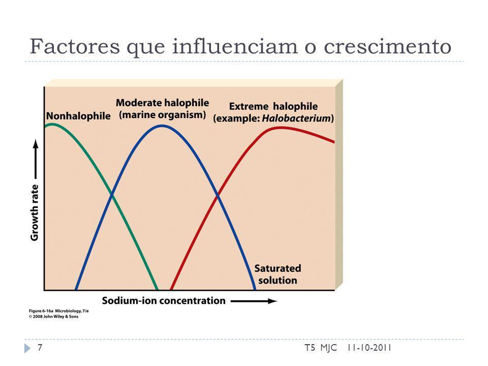 Factores que influenciam o crescimento 11-10-2011T5 MJC7