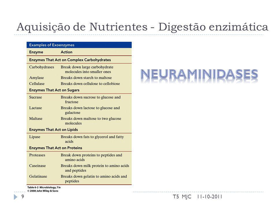 Aquisição de Nutrientes - Digestão enzimática 11-10-2011T5 MJC9