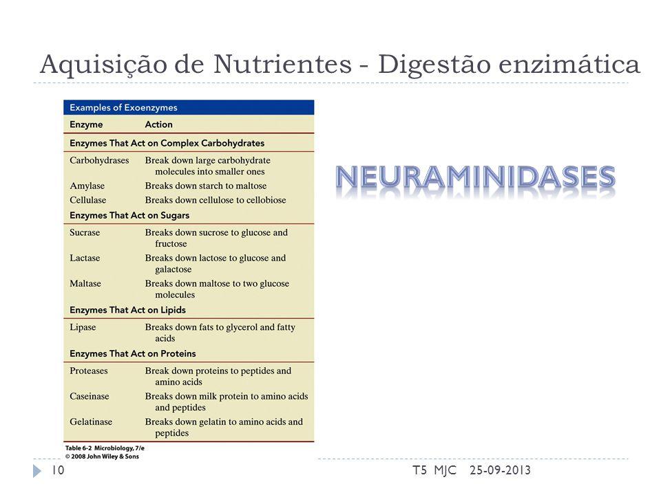 Aquisição de Nutrientes - Digestão enzimática 25-09-2013T5 MJC10