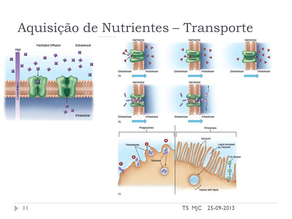 Aquisição de Nutrientes – Transporte 25-09-2013T5 MJC11