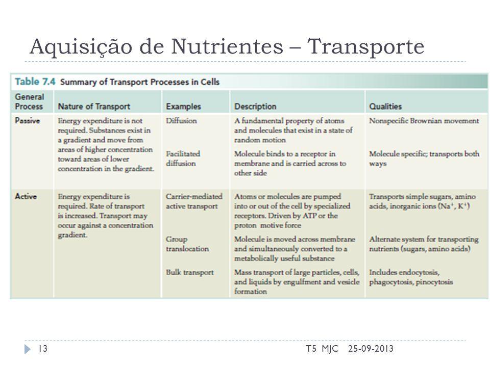 Aquisição de Nutrientes – Transporte 25-09-2013T5 MJC13