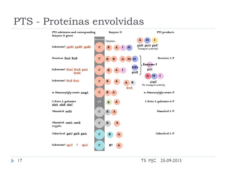 PTS - Proteínas envolvidas 25-09-2013T5 MJC17