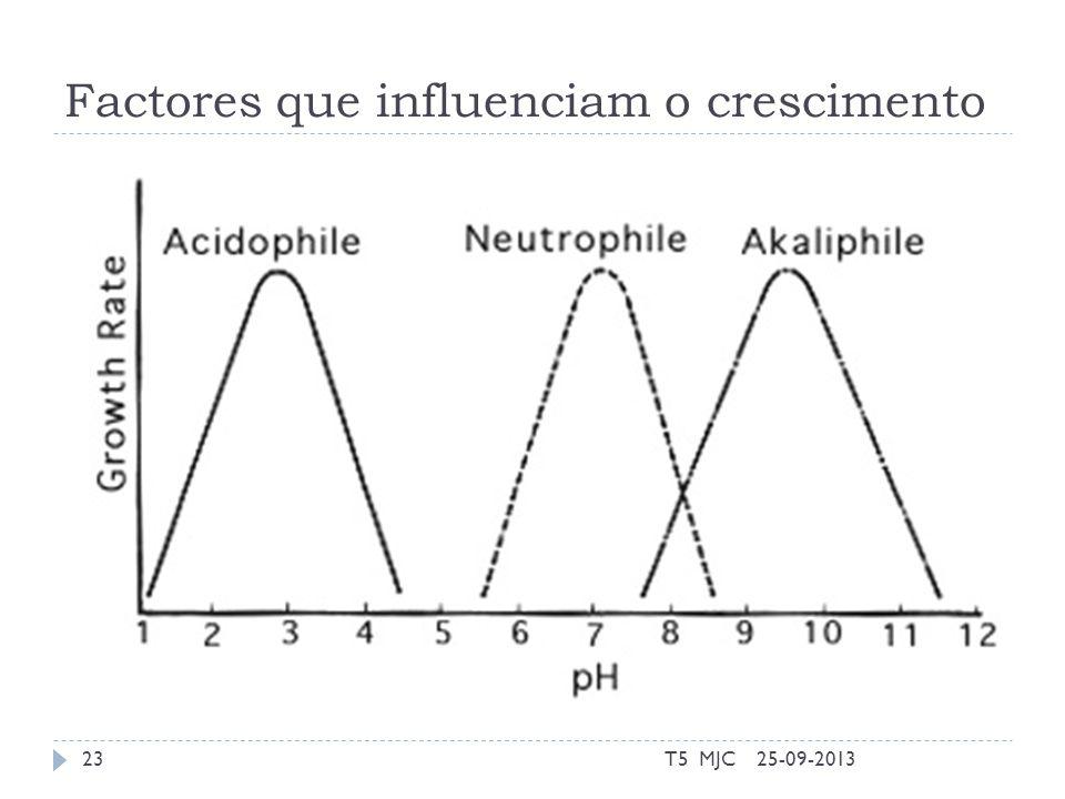 Factores que influenciam o crescimento 25-09-2013T5 MJC23