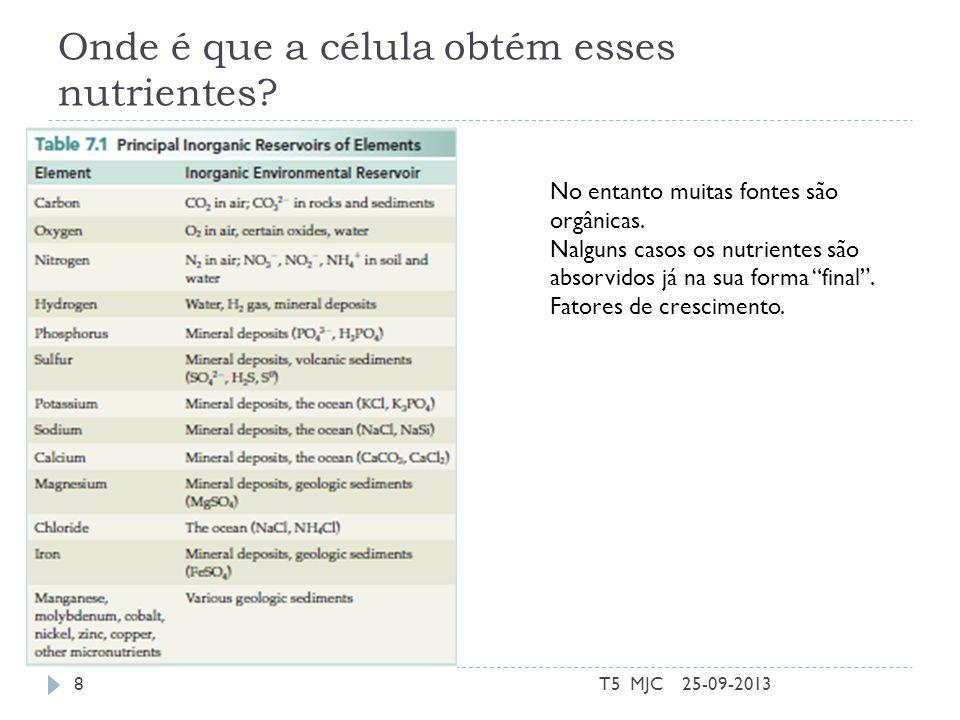 Aquisição de Nutrientes 25-09-2013T5 MJC9