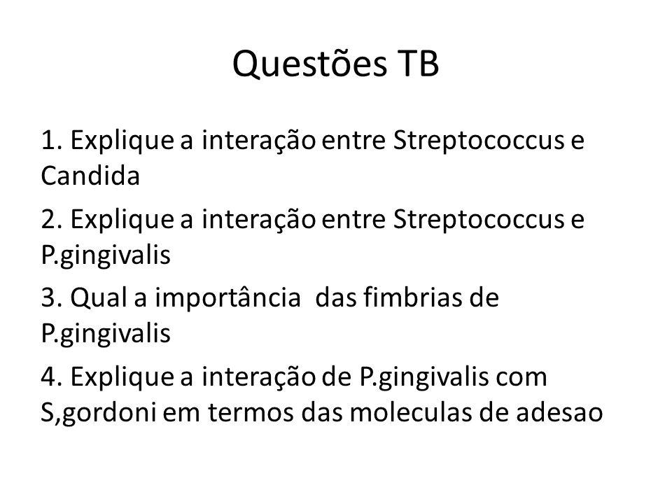 Questões TB 1. Explique a interação entre Streptococcus e Candida 2. Explique a interação entre Streptococcus e P.gingivalis 3. Qual a importância das