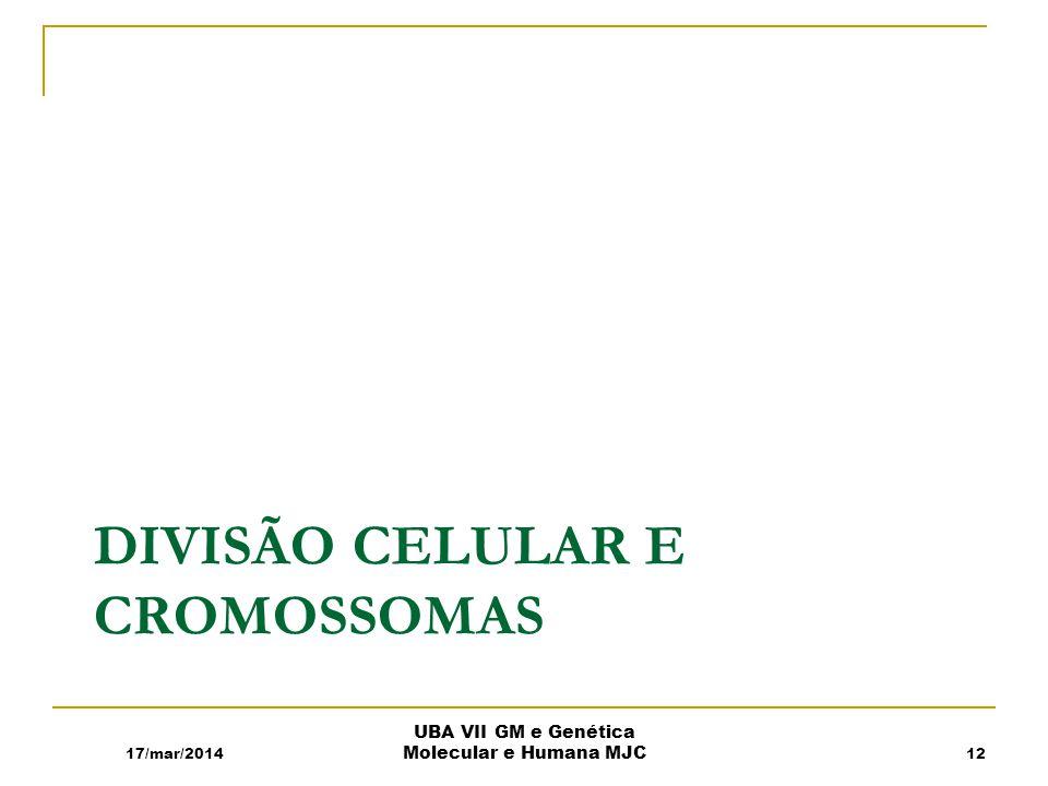DIVISÃO CELULAR E CROMOSSOMAS 17/mar/2014 UBA VII GM e Genética Molecular e Humana MJC 12